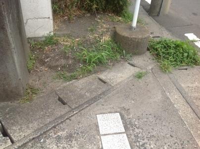 駐車場除草作業_c0186441_18152526.jpeg