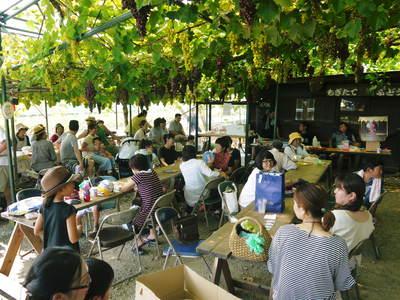 熊本ぶどう 社方園 第9回ぶどう祭り その2_a0254656_18231593.jpg