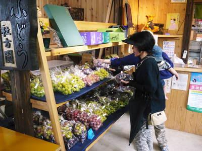 熊本ぶどう 社方園 第9回ぶどう祭り その2_a0254656_193737.jpg