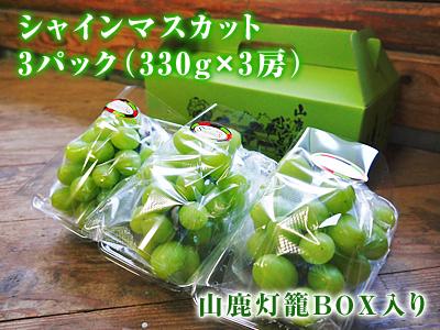熊本ぶどう 社方園 第9回ぶどう祭り その2_a0254656_20131296.jpg
