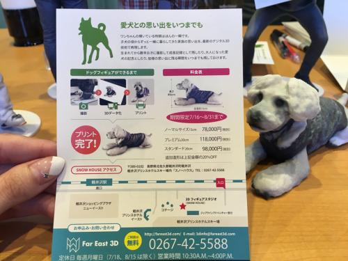 軽井沢プリンススキー場⭐️最新技術の3Dフィギュア_c0151965_13125813.jpg