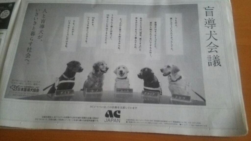 盲導犬会議_b0106766_07023115.jpg