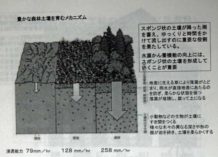第15期神奈川県森林インストラクター養成講座スタート8・20_c0014967_12561953.jpg