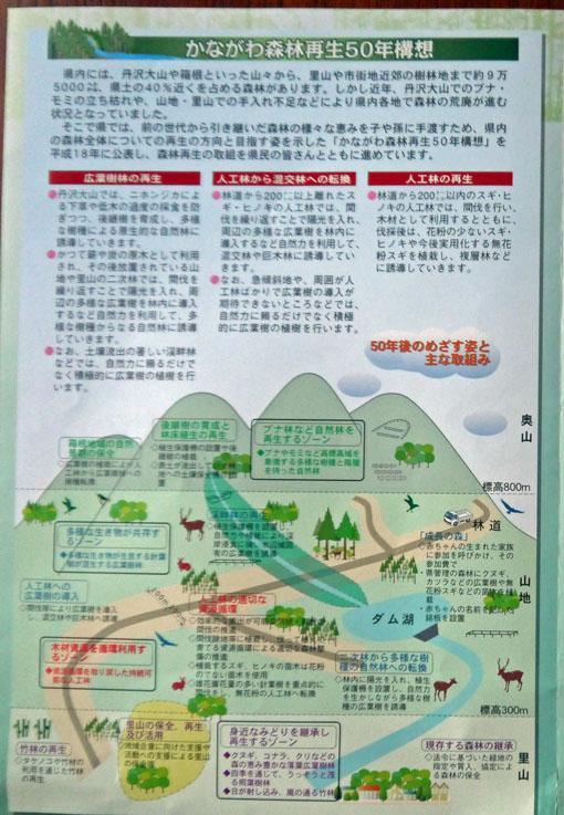 第15期神奈川県森林インストラクター養成講座スタート8・20_c0014967_12564376.jpg