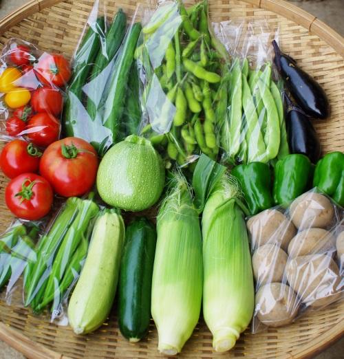 今週の野菜セット(8/23~8/27着)_c0110869_14162692.jpg