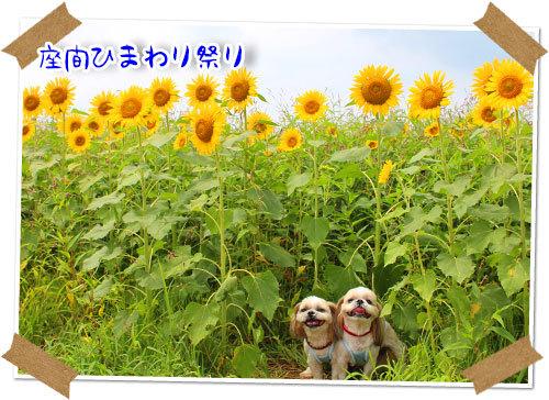 b0024183_22143200.jpg