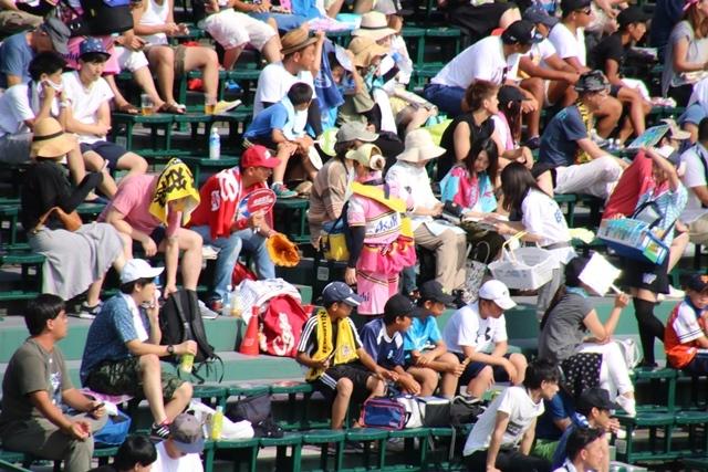 藤田八束の甲子園の魅力@野球少年憧れの甲子園大会、熱闘が繰り広げられる甲子園・・・甲子園スタンドの星_d0181492_20330022.jpg