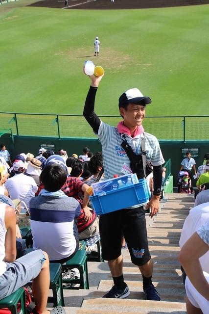 藤田八束の甲子園の魅力@野球少年憧れの甲子園大会、熱闘が繰り広げられる甲子園・・・甲子園スタンドの星_d0181492_20333992.jpg