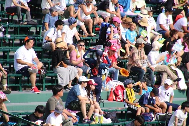 藤田八束の甲子園の魅力@野球少年憧れの甲子園大会、熱闘が繰り広げられる甲子園・・・甲子園スタンドの星_d0181492_20335264.jpg