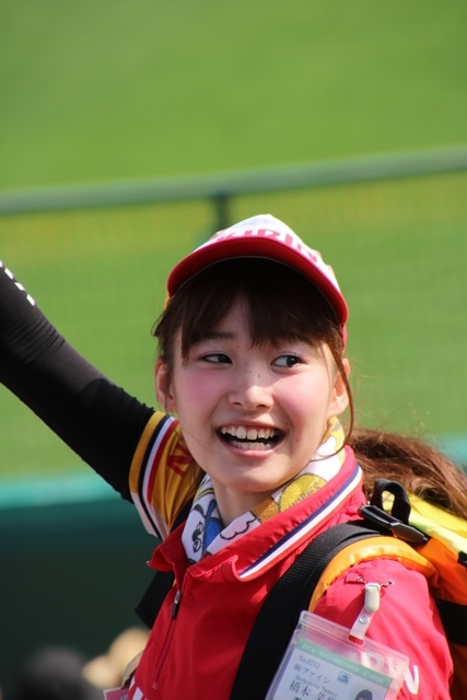 藤田八束の甲子園の魅力@野球少年憧れの甲子園大会、熱闘が繰り広げられる甲子園・・・甲子園スタンドの星_d0181492_20342524.jpg