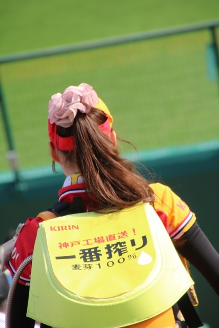 藤田八束の甲子園の魅力@野球少年憧れの甲子園大会、熱闘が繰り広げられる甲子園・・・甲子園スタンドの星_d0181492_20343596.jpg