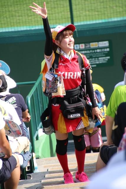 藤田八束の甲子園の魅力@野球少年憧れの甲子園大会、熱闘が繰り広げられる甲子園・・・甲子園スタンドの星_d0181492_20344710.jpg