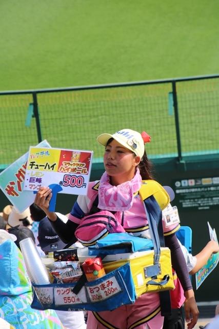 藤田八束の甲子園の魅力@野球少年憧れの甲子園大会、熱闘が繰り広げられる甲子園・・・甲子園スタンドの星_d0181492_20345897.jpg