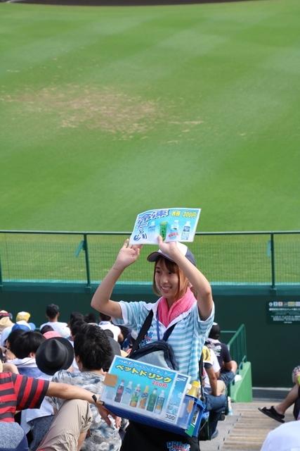 藤田八束の甲子園の魅力@野球少年憧れの甲子園大会、熱闘が繰り広げられる甲子園・・・甲子園スタンドの星_d0181492_20352977.jpg