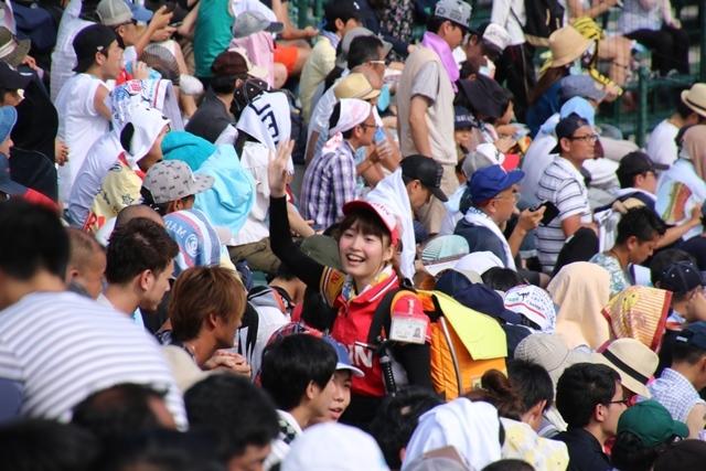 藤田八束の甲子園の魅力@野球少年憧れの甲子園大会、熱闘が繰り広げられる甲子園・・・甲子園スタンドの星_d0181492_20361483.jpg