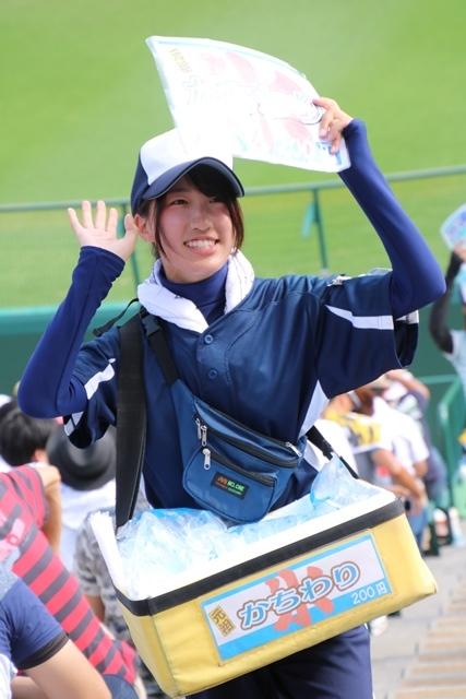 藤田八束の甲子園の魅力@野球少年憧れの甲子園大会、熱闘が繰り広げられる甲子園・・・甲子園スタンドの星_d0181492_20363035.jpg