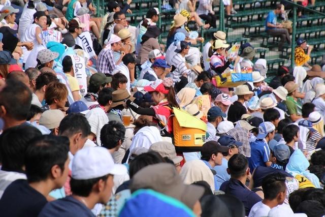 藤田八束の甲子園の魅力@野球少年憧れの甲子園大会、熱闘が繰り広げられる甲子園・・・甲子園スタンドの星_d0181492_20364486.jpg