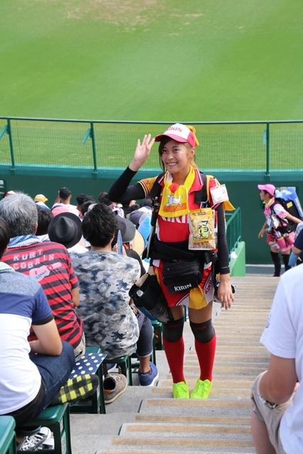 藤田八束の甲子園の魅力@野球少年憧れの甲子園大会、熱闘が繰り広げられる甲子園・・・甲子園スタンドの星_d0181492_20370747.jpg