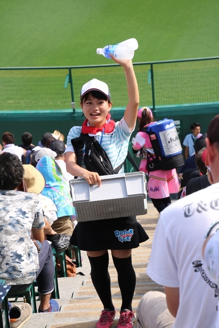藤田八束の甲子園の魅力@野球少年憧れの甲子園大会、熱闘が繰り広げられる甲子園・・・甲子園スタンドの星_d0181492_20380810.jpg