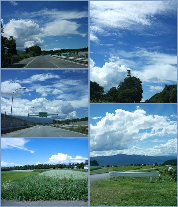 台風、大丈夫かな&ナスとトマトのパスタ_c0090198_1572119.jpg