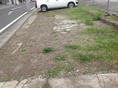 駐車場除草作業_c0186441_23502507.jpeg