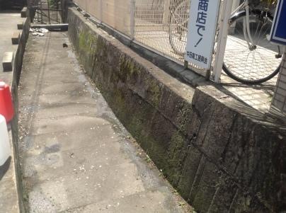 駐車場除草作業_c0186441_23563999.jpeg