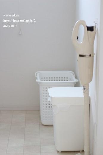新しい洗濯かご_e0214646_16434397.jpg