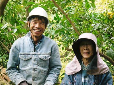 香り高き柚子(ゆず)令和元年度の香り高き『青柚子』販売スタート!柚子こしょうを手作りしませんか!_a0254656_18364297.jpg