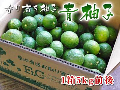 令和2年度の香り高き『青柚子』予約販売受付スタート!手作り「柚子こしょう」を作ってみませんか?_a0254656_1901833.jpg