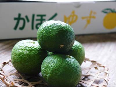 令和2年度の香り高き『青柚子』予約販売受付スタート!手作り「柚子こしょう」を作ってみませんか?_a0254656_19251733.jpg