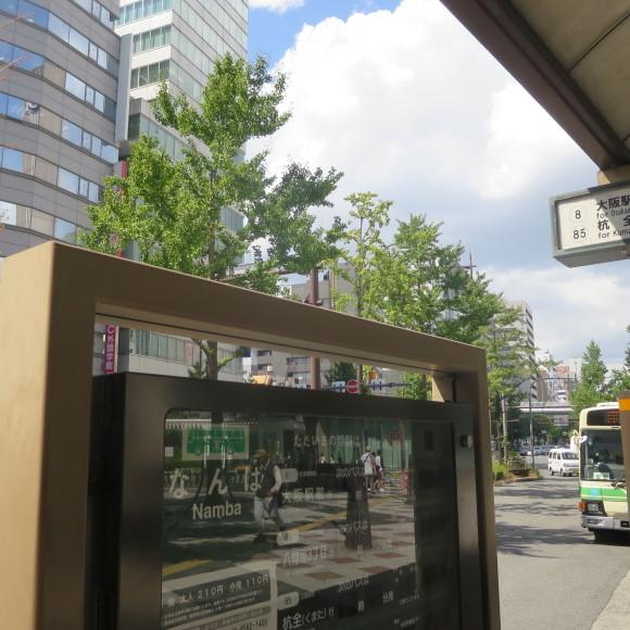 難波から奈良、路線バスの旅~ルイルイはいません~_c0001670_07141880.jpg