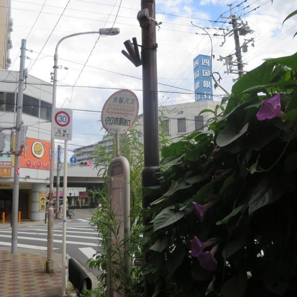 難波から奈良、路線バスの旅~ルイルイはいません~_c0001670_13495760.jpg