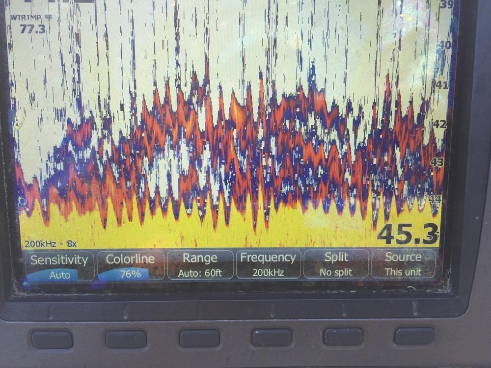 エリー湖釣行記 【アホビルダー、ポールさんの超絶シューティングテクに驚く!】_d0145899_12211921.jpg