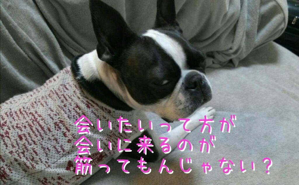 c0209932_21383709.jpg
