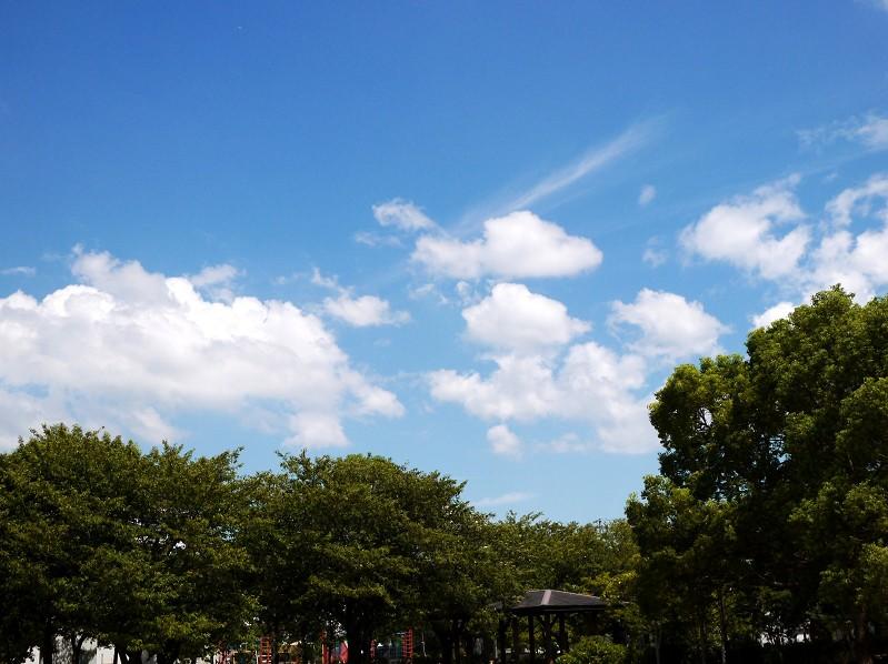 8月25日の雲_b0093754_23274095.jpg