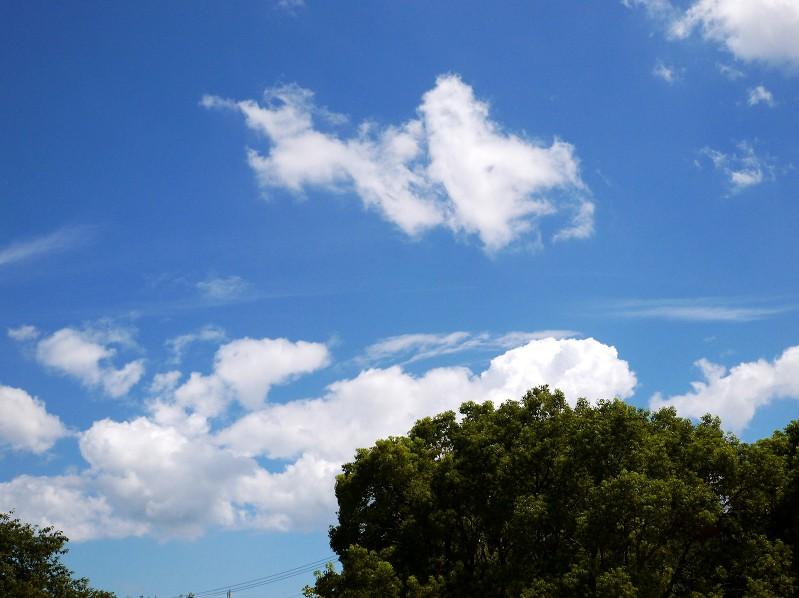 8月25日の雲_b0093754_23275722.jpg