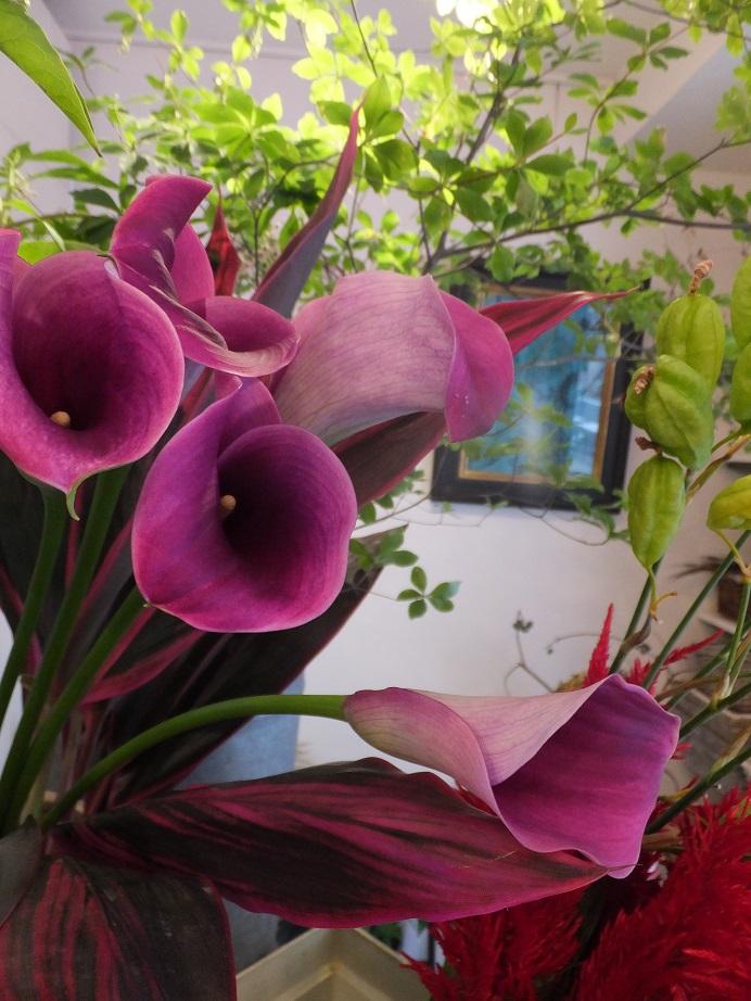 オークリーフ(秋色紫陽花とリーベンウォルシー)_f0049672_17124612.jpg