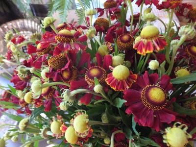 オークリーフ(秋色紫陽花とリーベンウォルシー)_f0049672_17135349.jpg