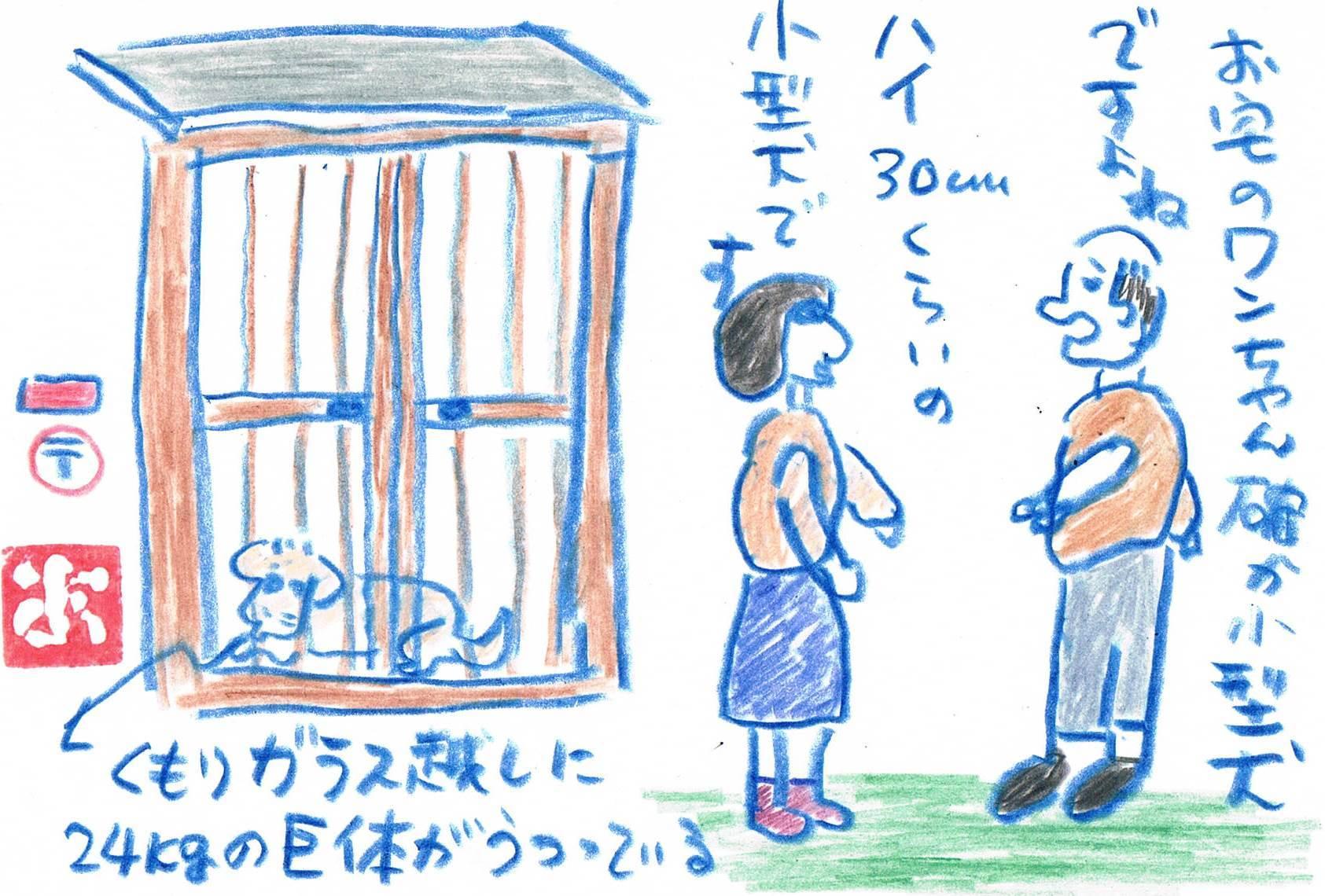 うめきちは小型犬です_e0232277_11253728.jpg