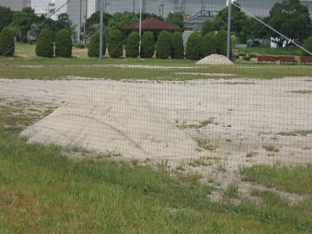 臨港緑地 野球場・運動広場の土補充について_d0338682_14432499.jpg
