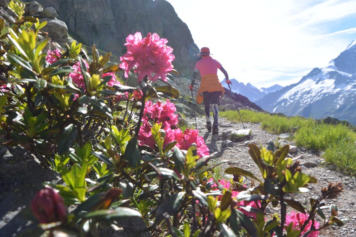 """2016年8月 『アルプスの女王、モンブラン』 August 2016 \""""Queen of the Alps, Mont Blanc\""""_c0219616_18305262.jpg"""