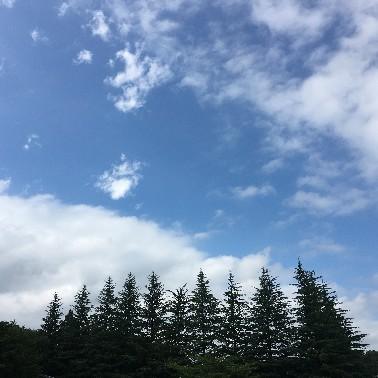 夏休みも終わり_d0171222_11421961.jpg