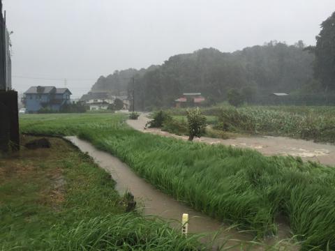 豪雨の多い年でしたね。_f0331126_13310293.jpg