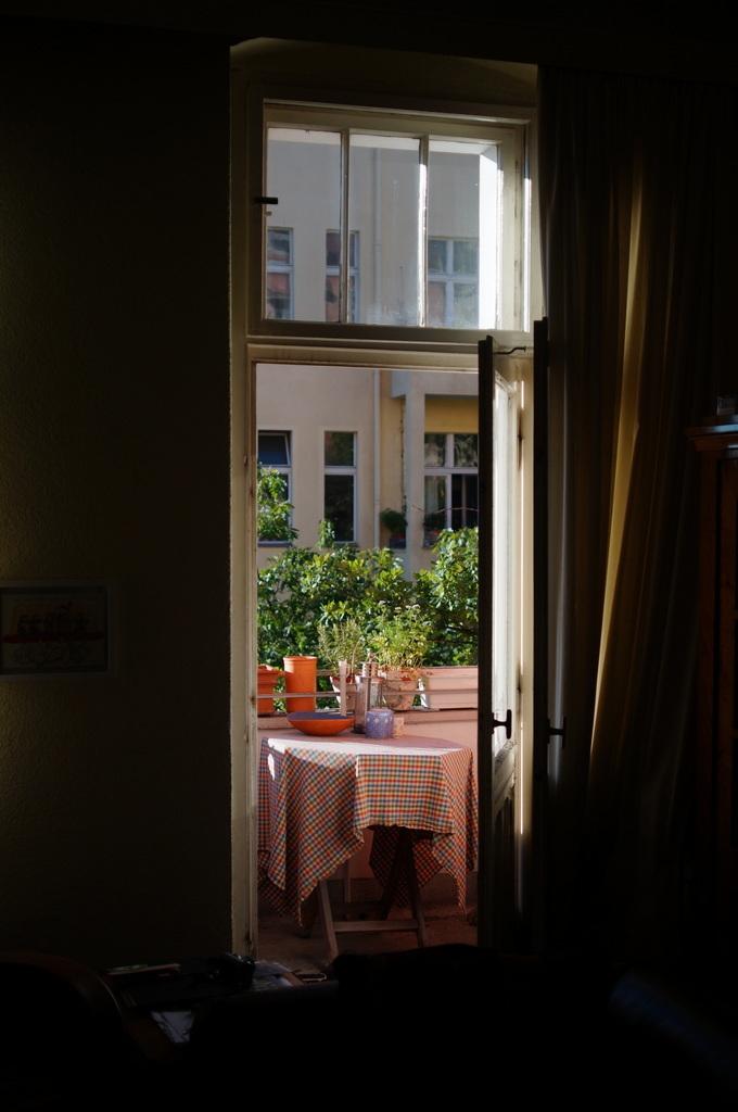 真夏が帰ってきたベルリン。_c0180686_15110651.jpg
