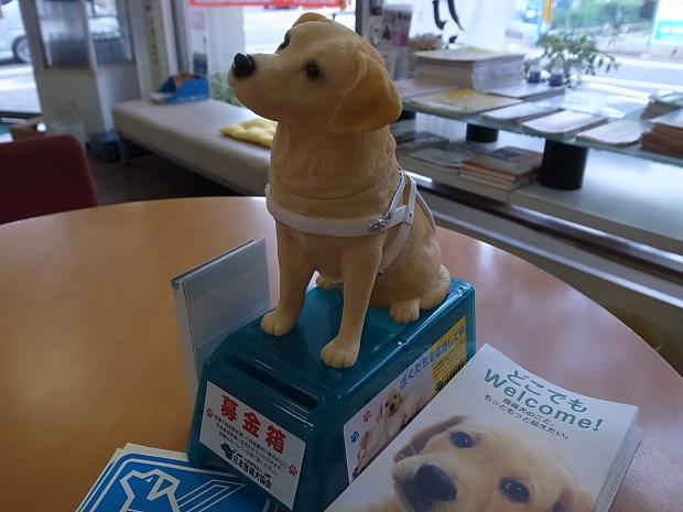 日本盲導犬協会募金箱 _f0197703_12104271.jpg
