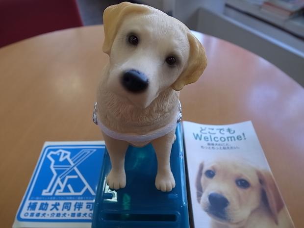 日本盲導犬協会募金箱 _f0197703_12111702.jpg