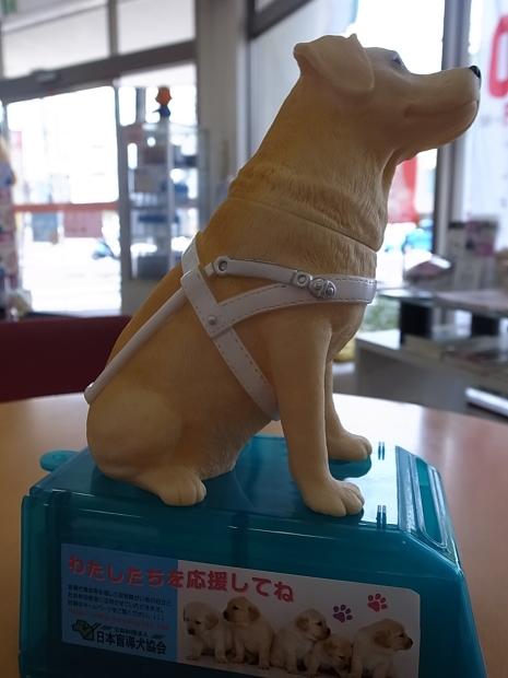 日本盲導犬協会募金箱 _f0197703_12114422.jpg