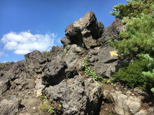 望岳台から雲の平へ_e0326953_12470797.jpg