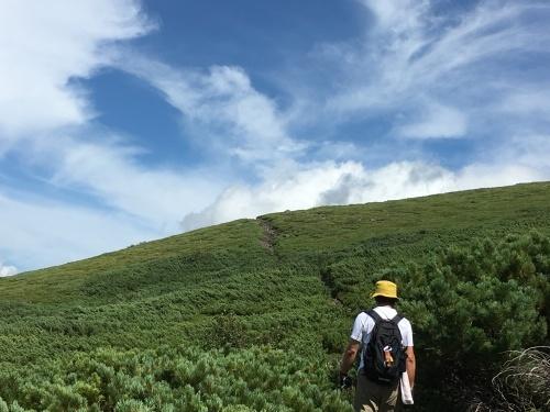 望岳台から雲の平へ_e0326953_12582864.jpg