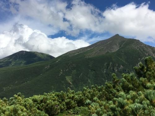 望岳台から雲の平へ_e0326953_12594292.jpg